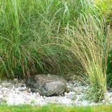 Wasser im Garten